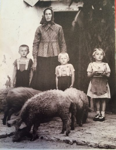 Adam's Aunt Maria with his little sister Anni, and the mangalitsa pigs raised for food in eastern Hungary. Identity of boys unknown. Taken in Elek, Hungary circa 1941